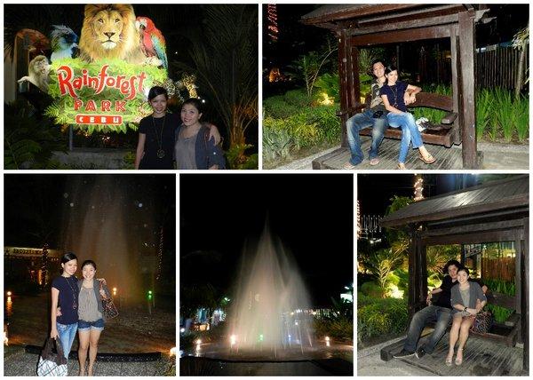 rainforest park