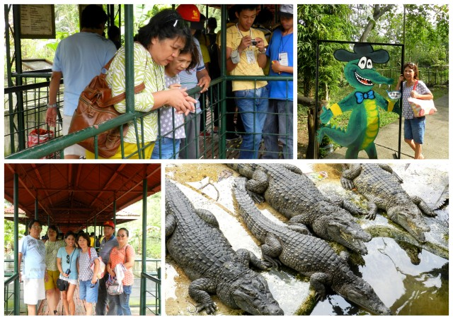 puerto princesa crocodile farm