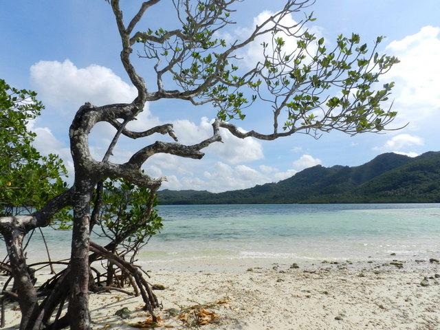 snake island, el nido