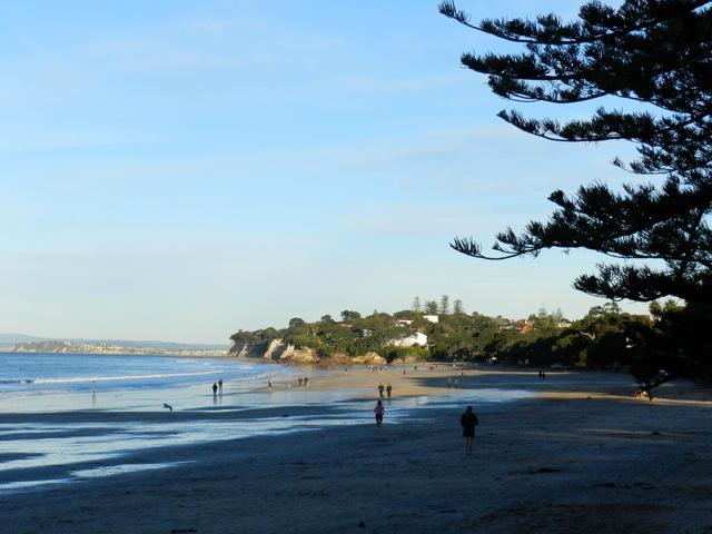 takapuna beach, auckland