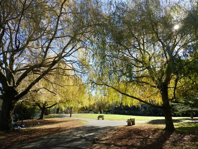 western springs park, auckland