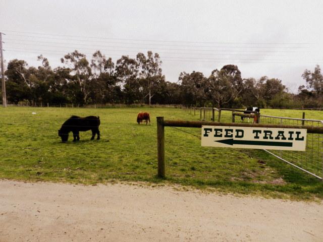 myuna farm