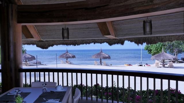 bluewater panglao beach resort