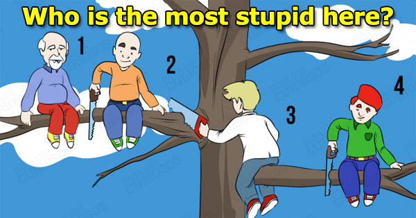 the most stupid personality test